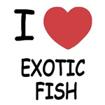 I heart exotic fish