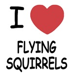I heart flying squirrels