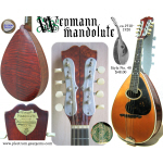 Antique Weymann Mandolute