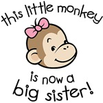 Big Sister - Monkey Face