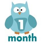 Custom Owl Age