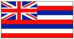 Hawaii Hawaiian Blank Flag