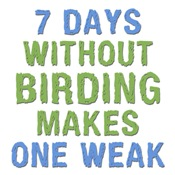 Without Birding One Weak