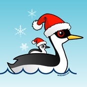 Western Grebe Santa
