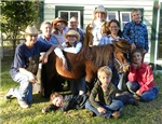 4-H County Wide Horse Project