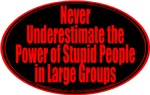 Never Underestimate the Power of Stupid People in