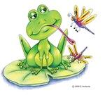 Logan the frog