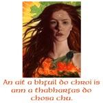 A Celtic Soul
