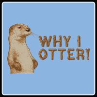 Why I Otter