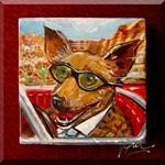 Maury the Chihuahua