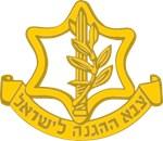 Israeli Defense Forces Badge