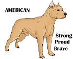 American Cartoon Dog