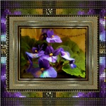 African Violet Painting by Susan Kinney
