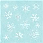 Contemporary Snowflake Print