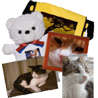 Jembie Cats