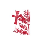 Pretty red christian cross 5 U M