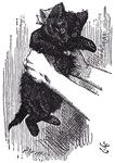 Kitten After All