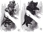 Double Image:<br> Red Queen / Kitten