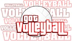 Got Volleyball