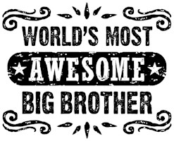 Awesome Big Brother