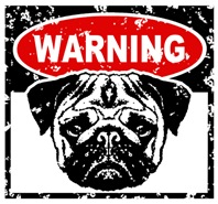 Warning Pug t-shirt