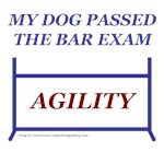 Agility Bar Exam