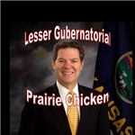 Lesser Gubernatorial Prairie Chicken