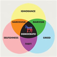 Democratic Venn Diagram