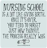 Nursing School like Birth II