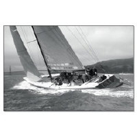<b>san francisco sailing posters + framed prints