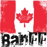 Banff Grunge Flag