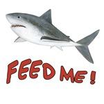 Shark - Feed Me