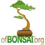 Bonsai Quotes