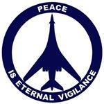 B-1B - Peace Is Eternal Vigilance