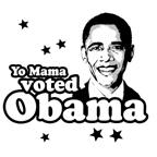 Yo moma voted Obama