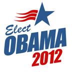 Elect Obama 2012