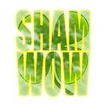 shamwow2-faded