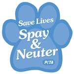 Spay & Neuter, Save Lives