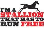 I'm a stallion