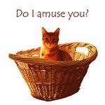 Amusing Cat