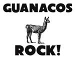 Guanacos Rock!