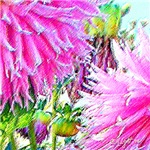 FLOWER WHISPER