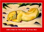 DOG LYING IN SNOW