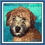 WHEATEN TERRIER: WET PUPPY