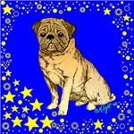 Pug with Stars