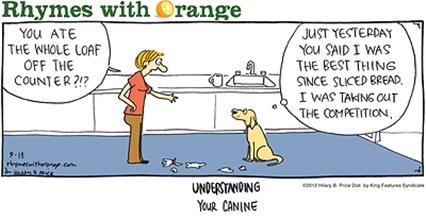 Understanding Your Canine