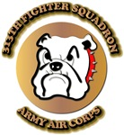 AAC - 313th Fighter Squadron