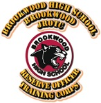 SSI - JROTC - Brookwood High School