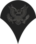 Army - Pin-On - SPC