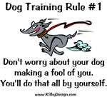 Trainer Fool